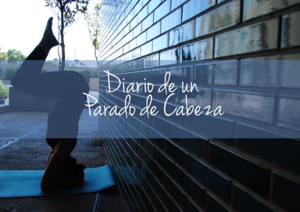 DiarioParadoCabeza